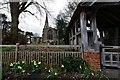 TL0475 : Keyston, St. John the Baptist's Church by Michael Garlick