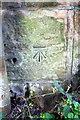 NY6723 : Benchmark on railway bridge SAC250 by Roger Templeman