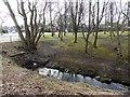NJ9005 : Feeder stream to West Burn of Rubislaw by Stanley Howe