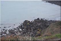 SX8958 : Rocks, Saltern Cove by N Chadwick