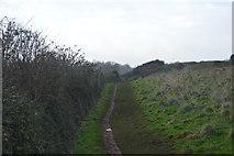 SX8957 : South West Coast Path by N Chadwick