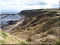 TA0883 : Gristhorpe Cliff and Sands by Oliver Dixon