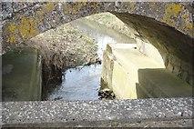 TF0940 : Underneath the arches by Bob Harvey