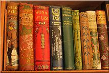 SX9050 : Books in the library, Coleton Fishacre by Derek Harper