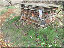 """SP9314 : The """"Wildlife Hotel"""" in the Wildlife Garden at College Lake by Chris Reynolds"""