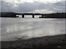 W7871 : Belvelly Railway Bridge by Redmond O'Brien