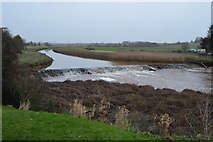 SX9788 : Weir, River Clyst by N Chadwick