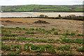 SW9674 : Arable field above the Camel estuary by Derek Harper
