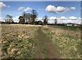 SJ7744 : Public footpath across field by Jonathan Hutchins