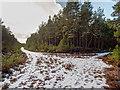 NH7035 : Littlemill Esker Trail by valenta