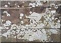 NY2045 : Ordnance Survey Cut Mark by Adrian Dust