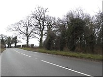 TL9397 : Watton Road, Thompson by David Howard