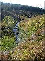 NH4266 : Allt a' Bhealaich Mhoir passes through Garbat Forest by Andy Waddington