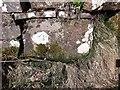 NX4148 : Cut Mark: Whauphill, Knockeffrick Bridge by Brian Westlake
