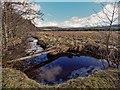 NH7036 : The Allt na Fuar-ghlaic by valenta
