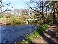 SJ9289 : The Jim Fernley Bridge by Dave Dunford