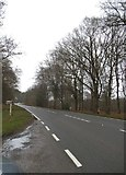 TL9391 : Watton Road by Hockham caravan site by David Howard