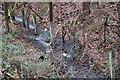 SO6115 : Former railway fencing by John Winder