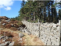 J3629 : Mountain wall separating Donard Wood from the open mountain by Eric Jones