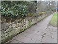 SJ2785 : Roadside wall in Arrowe Park Road, Woodchurch by John S Turner