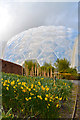 SX0455 : The North Bio-dome at the Eden Project, Cornwall by Andrew Tryon