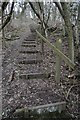 SO7139 : Steps leading up to Bradlow Knoll by Philip Halling