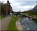 SP0890 : Rubbish in the Tame Valley Canal by Mat Fascione