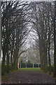 TL0018 : Whipsnade : Tree Cathedral by Lewis Clarke