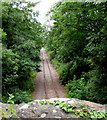 ST6882 : Single-track railway west of Nibley Lane near Iron Acton by Jaggery
