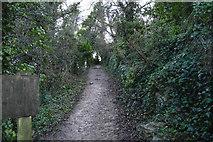 SX9364 : South West Coast Path by N Chadwick