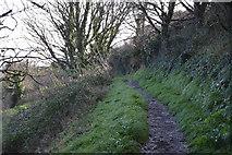SX9463 : South West Coast Path by N Chadwick