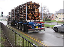 ST3091 : Wooden logs in transit, Malpas Road, Newport by Jaggery