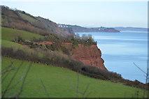 SX9369 : Cliffs, Herring Cove by N Chadwick