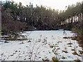 NH7036 : Frozen Kettle Hole Lochan by valenta
