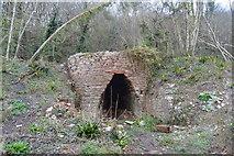 SX9156 : Lime Kiln, The Grove by N Chadwick