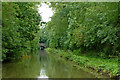 SP4877 : Oxford Canal north-west of Newbold-on-Avon, Warwickshire by Roger  Kidd