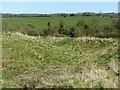 SK6804 : Medieval motte, Ingarsby by Alan Murray-Rust
