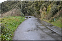 SX9363 : Ilsham Marine Drive by N Chadwick