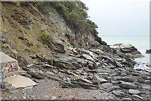 SX9363 : Rocks, Meadfoot Beach by N Chadwick