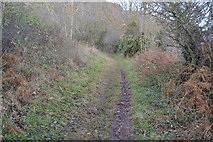 SX9369 : South West Coast Path by N Chadwick