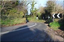 SX9371 : Teignmouth Rd by N Chadwick