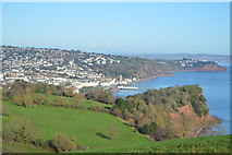 SX9472 : View to Teignmouth by N Chadwick
