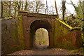 SY1090 : Arch Bridge on Disused Railway near Bowd, Devon by Andrew Tryon