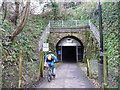ST7463 : Cyclist entering Devonshire Tunnel from the east by Christine Johnstone