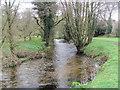 SX7384 : The River Bovey near Bovey Castle by Chris Reynolds