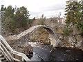 NH9022 : Packhorse bridge over River Dulnain at Carrbridge by Douglas Nelson