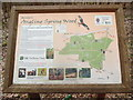 SP8801 : Noticeboard at Angling Spring Wood by David Hillas