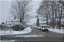 TQ5841 : Snow, Yew Tree Rd by N Chadwick