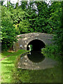SP4877 : Newbold Tunnel in Warwickshire by Roger  Kidd