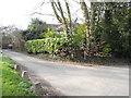 SP8605 : Dunsmore Lane by David Howard
